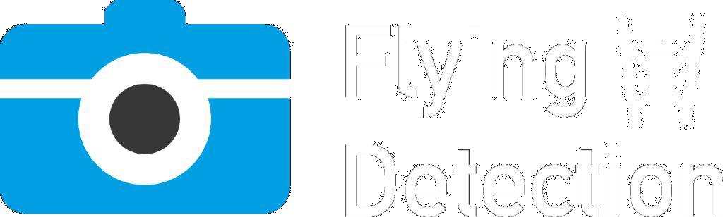 flying-detection
